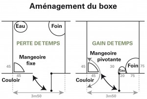 Croquis d'aménagement d'un box pour cheval