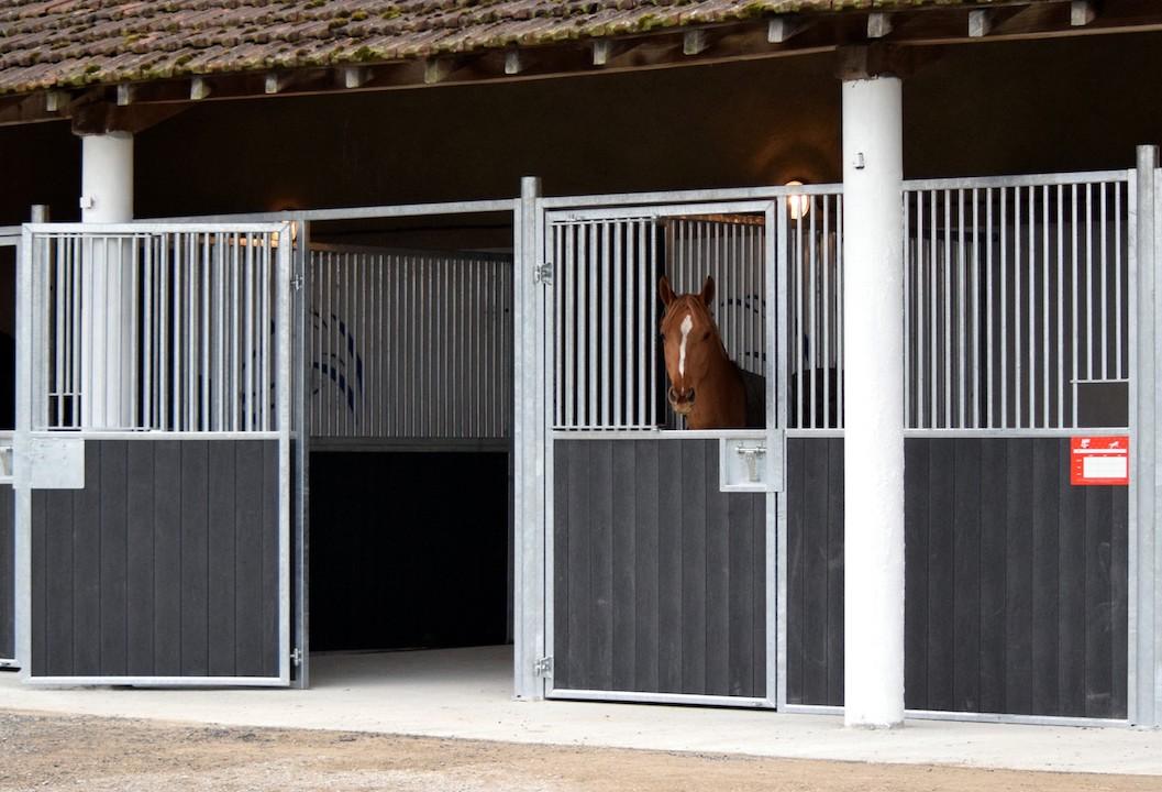 Façade de box pour chevaux modèle battant avec cheval alezan