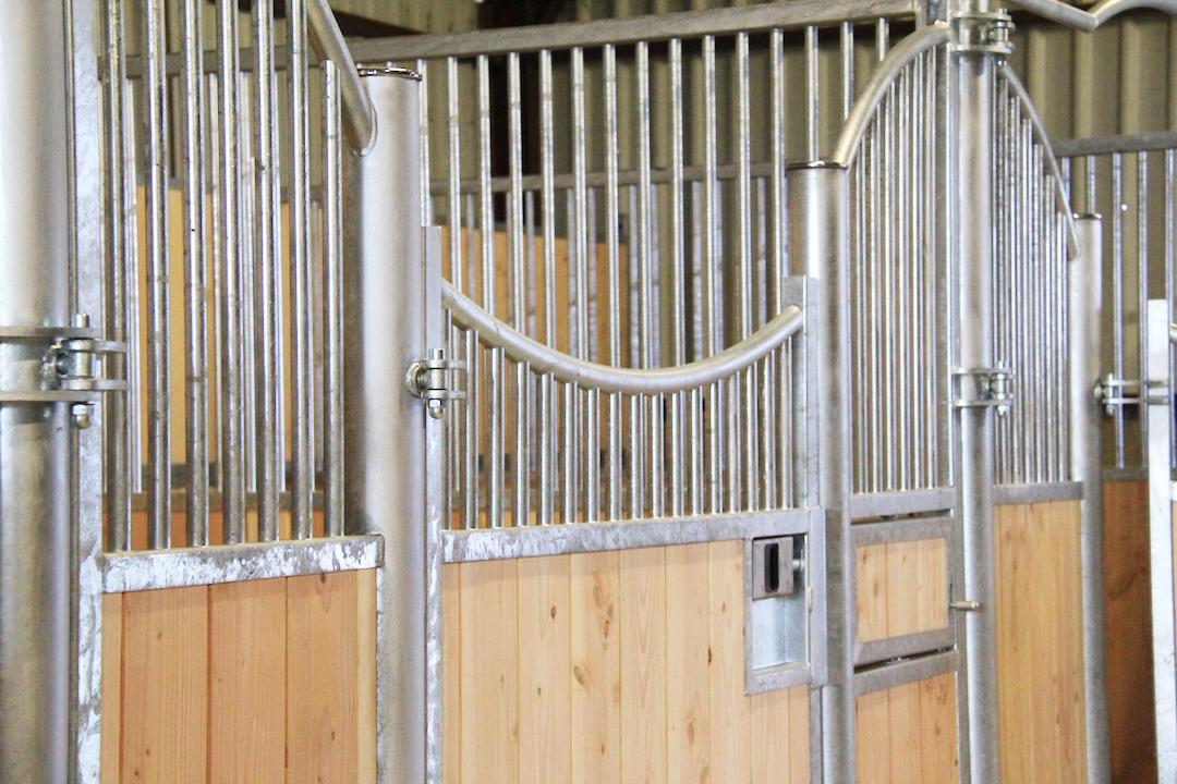 Détail façade de box pour cheval modèle Lion
