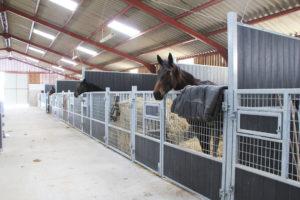 Écurie d'un élevage de chevaux