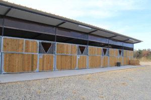 Boxes pour chevaux en bois traité autoclave