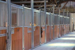 Boxes pour chevaux en bambou