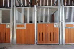 Box pour cheval modèle Félin et remplissage bambou