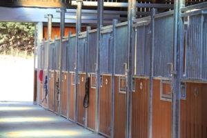 Écurie en bambou équipée de façades portes battantes et de séparations coulissantes