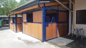 Box pour cheval de couleur bleue et bois exotique