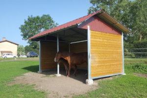 Jument et son poulain sous un abri de prairie à toiture 2 pans