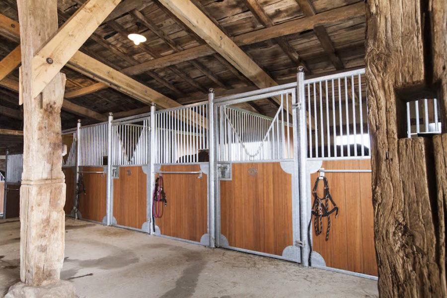 Boxes pour chevaux en acier galvanisé à chaud et remplissage bambou