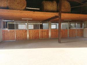 4 façades de boxes modèles Debussy dans écurie pour chevaux